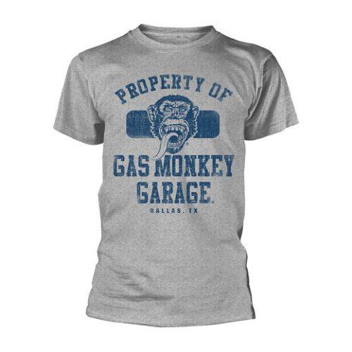 gasmonkeygpgd4